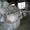Секонд хенд. Англия. Сортировки Люкс,  Экстра,  Крем. Одежда,  обувь и т.п. #922056