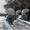 Вентиляционные системы в Харькове. #966973
