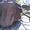 Ковш на ЭО-5111 (ЭО-10011) прямой лопаты емкостью 1, 2 м3  #1612736