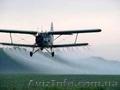 Авіаційно-хімічні роботи літаками Ан-2 та Х-32 Бекас