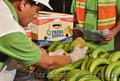 оптовые поставки бананов из эквадора