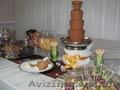 Шоколадный фонтан Луцк,  фруктовые композиции,  пальмы