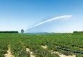 Монтаж трубопроводов для полива