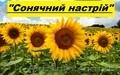 Соняшникове насіння гібриду  – «Сонячний настрій»,  стійкий  до Гранстару