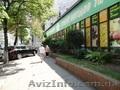 В центре Киева. Отдельно-стоящее торгово-офисное здание.