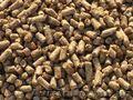 Комбікорм: висівки гранульовані вівсяно-ячмінні