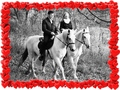 Подарок на 8 марта  - сертификат на конную прогулку
