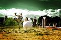 Свадебный фотограф,  видеооператор/Відеооператор,  фотограф на весілля