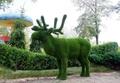 Изготовление и продажа скульптур топиарий по всей Украине.